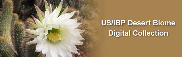 US/IBP Desert Biome Digital Collection