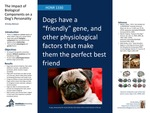 The Impact of Biological Components on a Dog's Personality by Kinsley Batson