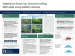 Vegetation Green Up: Ground-Truthing NDVI Data Using Wildlife Cameras by Steven Handtke
