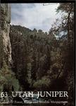 The Utah Juniper, Volume 34 by Utah State University