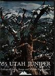 The Utah Juniper, Volume 36 by Utah State University