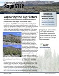 SageSTEP News, Summer 2013, No. 21 by SageSTEP