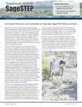 SageSTEP News, Fall 2017, No. 31