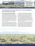 SageSTEP News, Spring 2020, No. 36